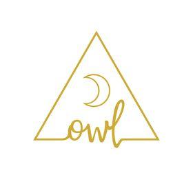 owl at the 3xt retreat